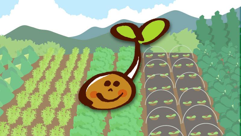 種苗法改定で日本の農業が外資に売り飛ばされるかもな話