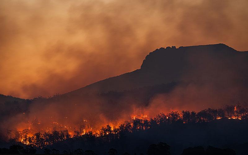 気候変動と資本主義。利益第一主義の経済が地球を壊している。